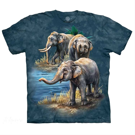 Asian Elephants - 15-5979 - Youth Tshirt