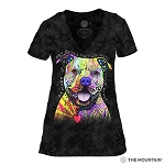 Beware of Pit Bulls...They Will Steal Your Heart - 41-3796 - Women's Triblend V-Neck Tee