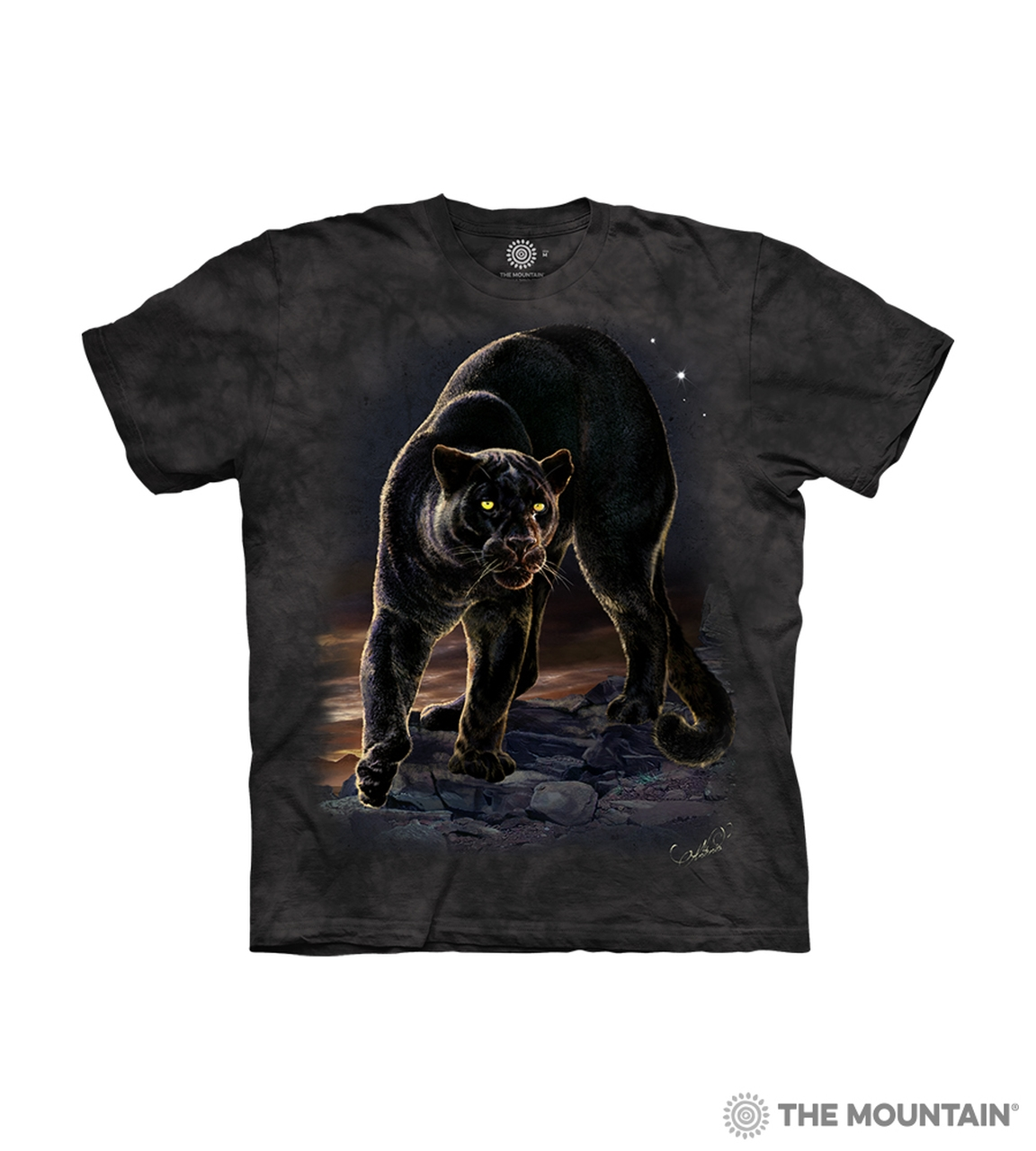 Black Panther - 15-6277 - Youth Tshirt
