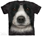 Border Collie Face - 10-3606 - Adult Tshirt