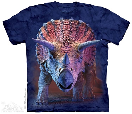 Charging Triceratops - 15-3562 - Youth Tshirt