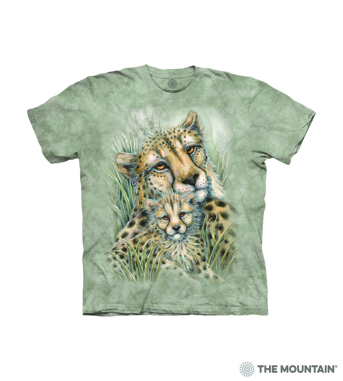 Cheetahs - 15-6276 - Youth Tshirt
