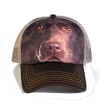 Chocolate Lab Portrait - 76-3550 - Trucker Hat