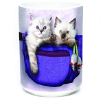 Fanny Pack Kittens - 57-3693-0901 - Everyday Coffee Mug