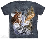 Find 11 Owls - 15-3485 - Youth Tshirt