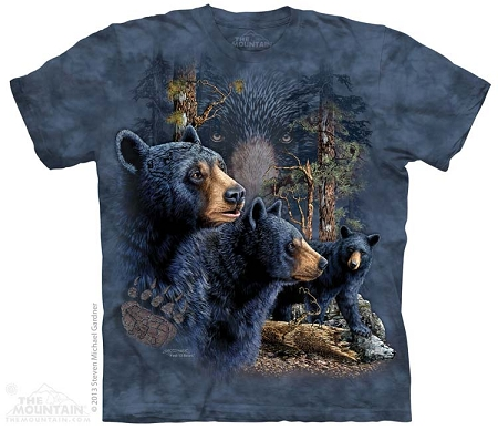 Find 13 Black Bears - 15-3481 - Youth Tshirt