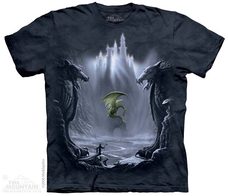 Lost Valley Dragon - 10-1298 - Adult Tshirt