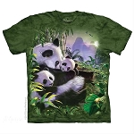 Panda Bear Cuddles - 15-5886 - Youth Tshirt