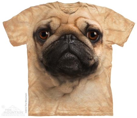Pug Face - 15-3369 - Youth Tshirt