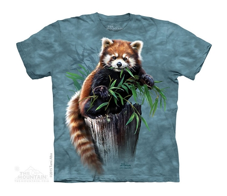 Bamboo Red Panda - 15-4300 - Youth Tshirt