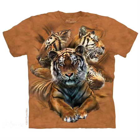 Resting Tiger Collage - 15-5889 - Youth Tshirt