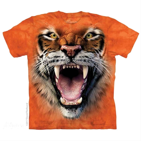 Roaring Tiger Face - 15-5911 - Youth Tshirt