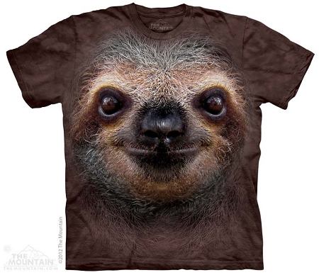 Sloth Face - 15-3596 - Youth Tshirt