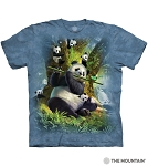 Pan Da Bear- 10-6442 - Adult Tshirt