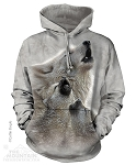 Singing Lessons - Adult Hoodie