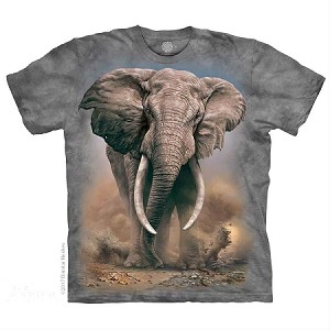 African Elephant - 15-5959 - Youth Tshirt