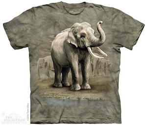 Asian Elephants - Adult Tshirt
