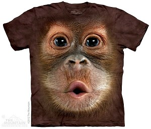 Baby Orangutan - Youth Tshirt