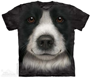 Border Collie Face - Adult Tshirt