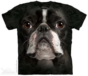 Boston Terrier Face - 10-3367 - Adult Tshirt