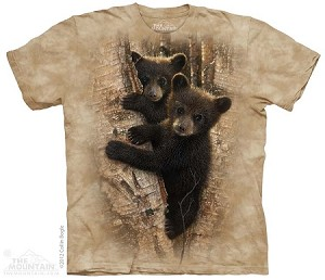Curious Bear Cubs - 15-3537 - Youth Tshirt