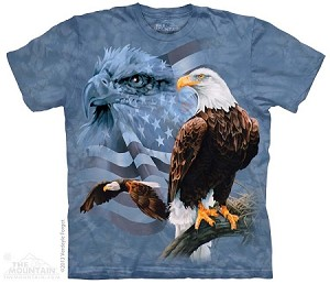 Faded Flag and Eagles - Adult Tshirt