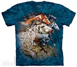 Find 13 Horses -10-3538 - Adult Tshirt