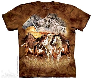 Find 15 Horses - Adult Tshirt