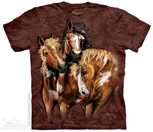 Find 8 Horses - Youth Tshirt