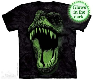 Big Face Glow Rex - Youth Tshirt