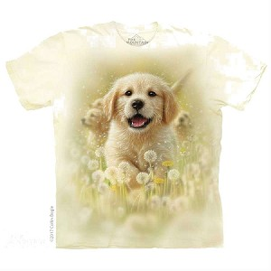 Golden Puppy -10-5933 - Adult Tshirt