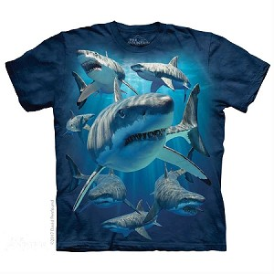 Great White Sharks - 15-5940 - Youth Tshirt