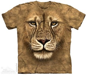 Lion Warrior - 15-3180 - Youth Tshirt