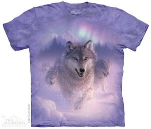 Northern Lights - 10-4881 - Adult Tshirt