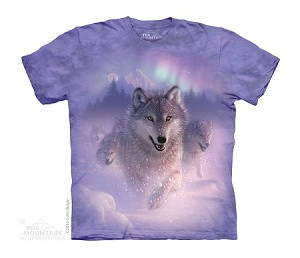 Northern Lights - Youth Tshirt