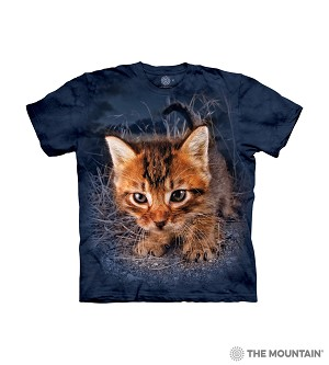 Pounce Captain Snuggles - 15-5789 - Youth Tshirt