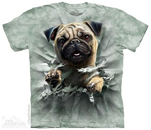 Pug Breakthru - Youth Tshirt