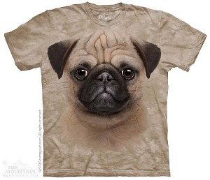 Pug Puppy - Adult Tshirt
