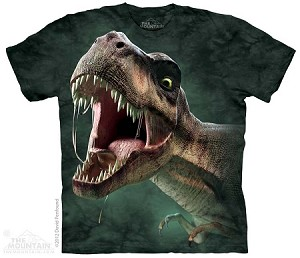 T-Rex Roar - 15-3567 - Youth Tshirt